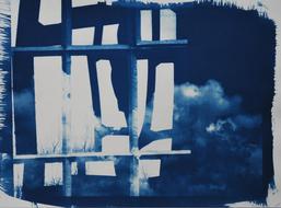 """Cyanotypie, """"Besondere Landschaften"""" ca. 30 x 20 cm"""