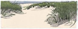 Eva Pietzcker, Dünen, japanischer Holzschnitt